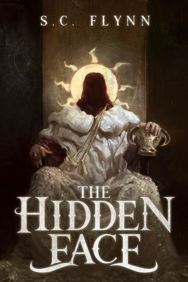 The Hidden Face blog tour summary